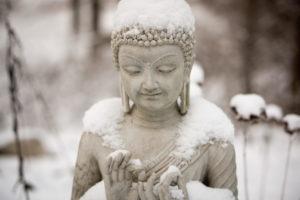 DailyDhamma Meditatie