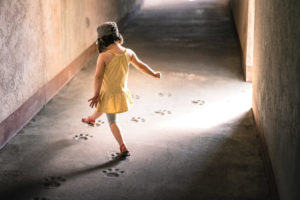 DailyDhamma - Acht stappen naar geluk